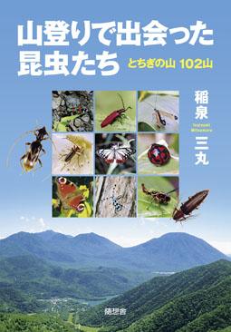山登りで出会った昆虫たち